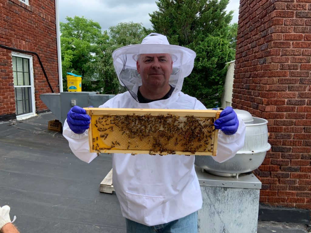 Honey Man 1024x768