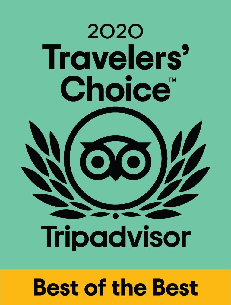 Triadvisor award 1